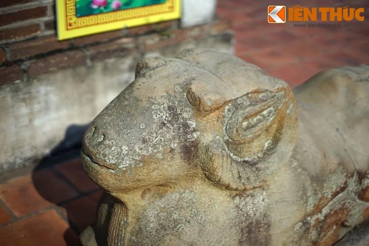 Tan muc con cuu da cuc la trong chua co Bac Ninh-Hinh-4