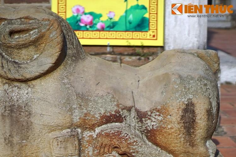 Tan muc con cuu da cuc la trong chua co Bac Ninh-Hinh-8