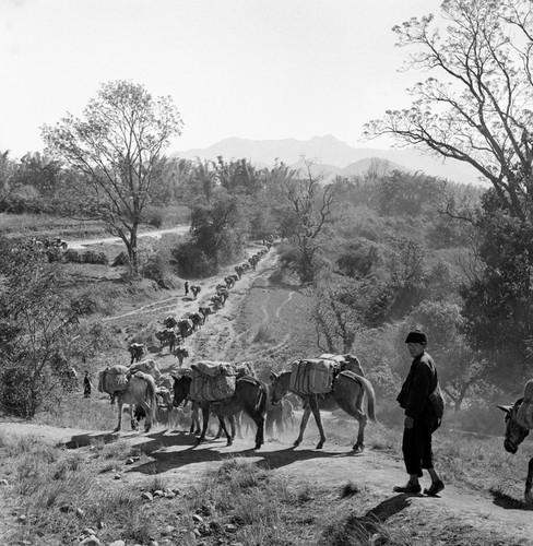 Myanmar nam 1942 qua ong kinh phong vien Anh (2)-Hinh-5