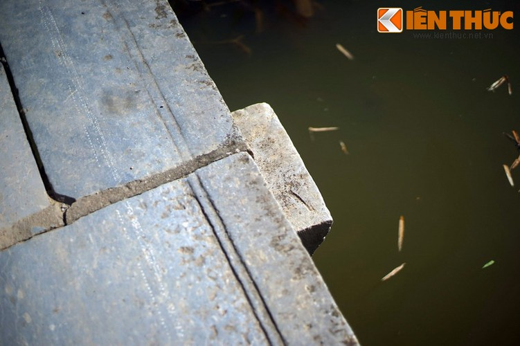 Can canh cay cau da co tuyet dep cua xu Nghe-Hinh-7