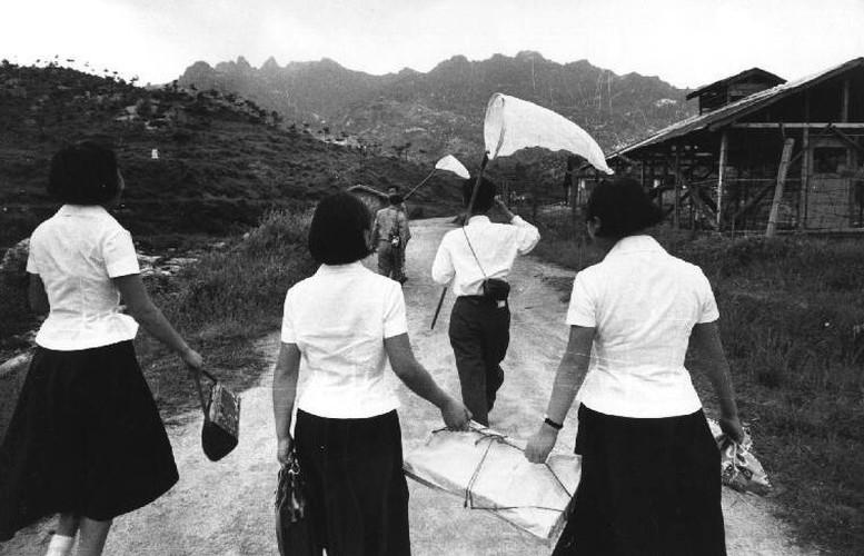 To mo cuoc song binh di o Seoul nam 1961-Hinh-7