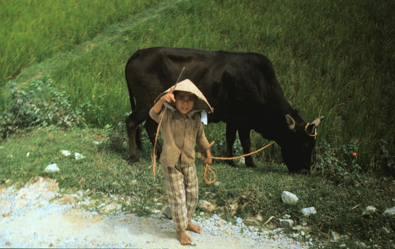 Quang Ngai nam 1967 qua ong kinh si quan phao binh My (2)-Hinh-13