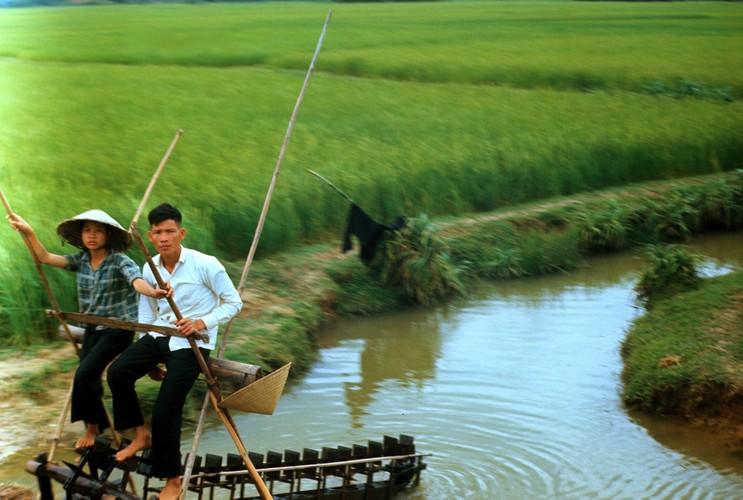 Quang Ngai nam 1967 qua ong kinh si quan phao binh My (2)-Hinh-8