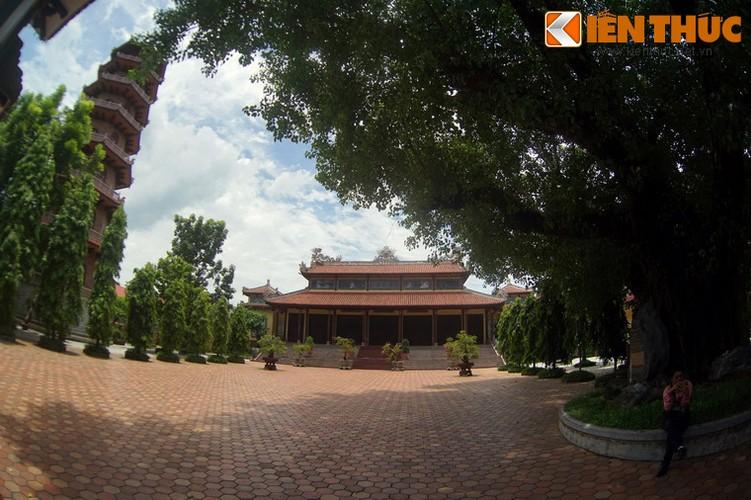 Tham coi bo de dac biet nhat Viet Nam o chua Tu Dam-Hinh-15
