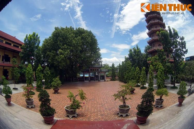 Tham coi bo de dac biet nhat Viet Nam o chua Tu Dam-Hinh-2
