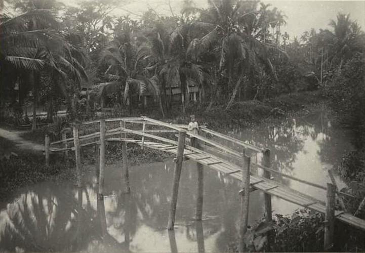 Bat ngo truoc ve phon hoa cua Ben Tre thap nien 1920-Hinh-12