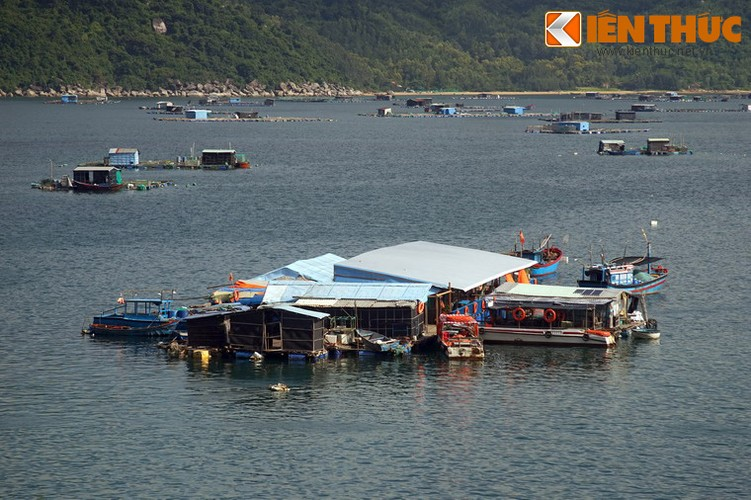 Dam say truoc khung canh ky vi cua vinh Vung Ro-Hinh-11