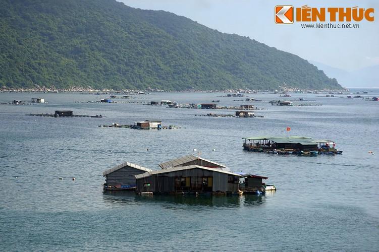 Dam say truoc khung canh ky vi cua vinh Vung Ro-Hinh-14