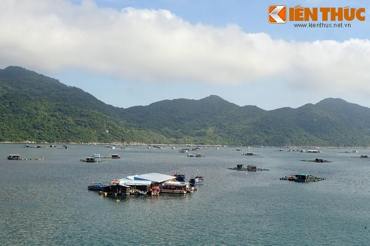Dam say truoc khung canh ky vi cua vinh Vung Ro-Hinh-2