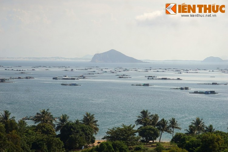 Dam say truoc khung canh ky vi cua vinh Vung Ro-Hinh-4