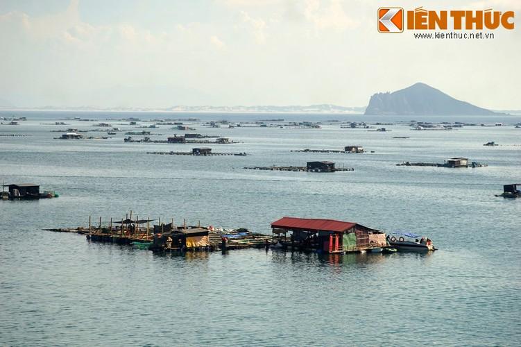 Dam say truoc khung canh ky vi cua vinh Vung Ro-Hinh-7