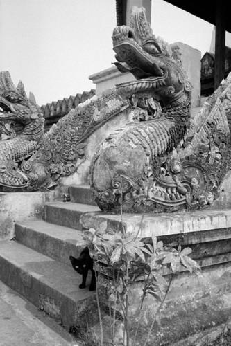Loat anh de doi ve thanh pho Vientiane thap nien 1990 (1)-Hinh-15