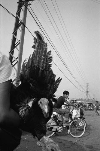 Loat anh de doi ve thanh pho Vientiane thap nien 1990 (1)-Hinh-7