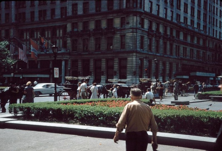 Anh hiem co ve thanh pho New York nam 1960-1961 (1)-Hinh-15