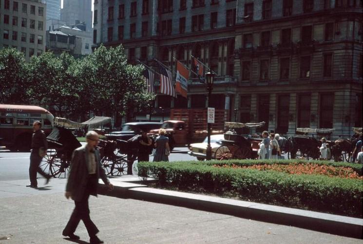 Anh hiem co ve thanh pho New York nam 1960-1961 (1)-Hinh-21