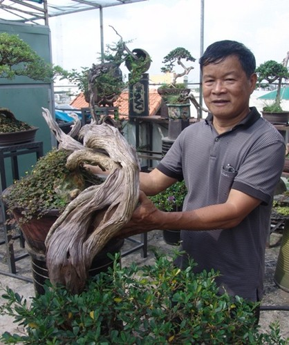 """Can canh: Lao nong Sai Gon phu phep goc """"cui"""" thanh cay canh nua ty-Hinh-3"""