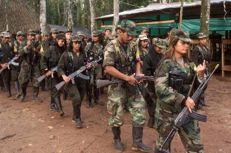 Chum anh ve cuoc noi day cua FARC o Colombia-Hinh-12