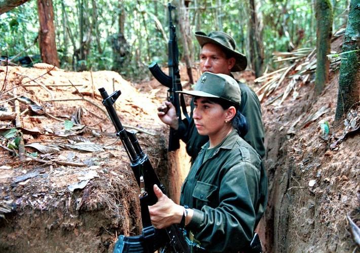 Chum anh ve cuoc noi day cua FARC o Colombia-Hinh-2