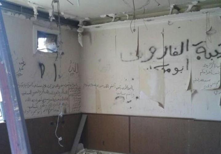Anh: Quan doi Syria giai phong mot so vung o bac Aleppo-Hinh-6