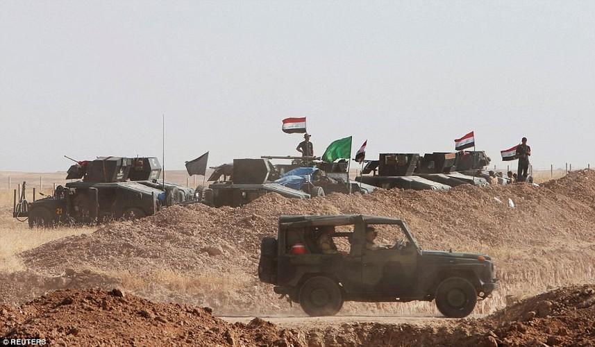 Anh quan doi Iraq chuan bi danh phien quan IS o Mosul-Hinh-3