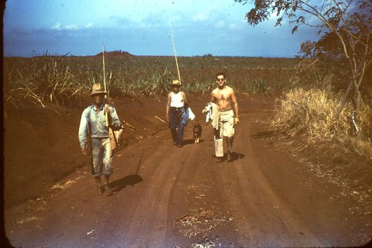 Bang Hawaii nam 1945 trong ra sao?-Hinh-8