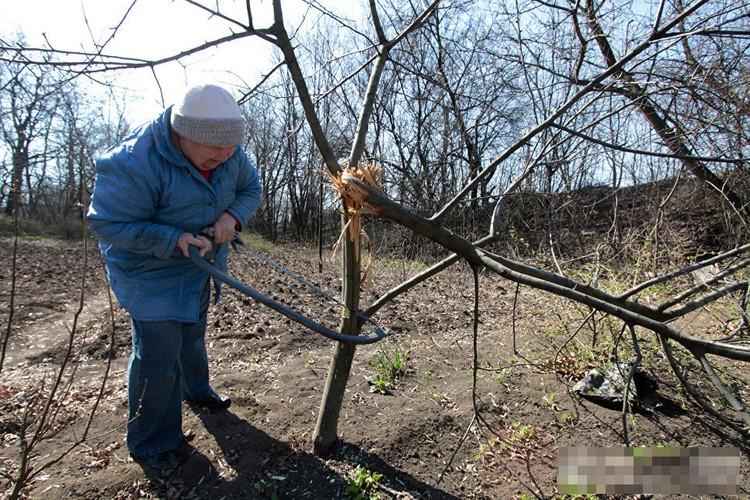 Anh ngoi lang o mien dong Ukraine tan hoang do trung bom dan-Hinh-15