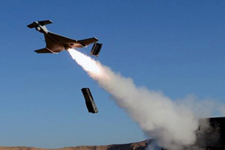 "UAV Harop - ""mui ten lua"" HQDB Viet Nam nen duoc trang bi-Hinh-4"