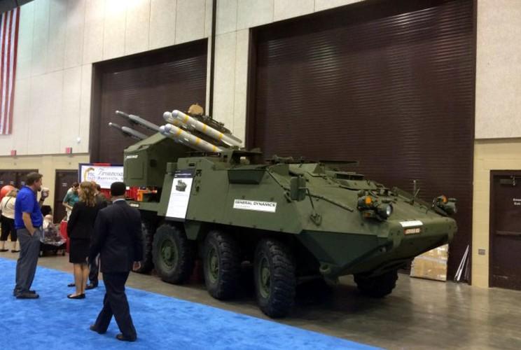 My lot xac Stryker, may bay, xe tang Nga coi chung-Hinh-5