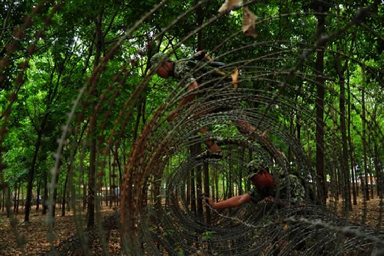 """Bat ngo """"do nghe"""" giup dac cong Viet Nam tro nen vo hinh-Hinh-9"""