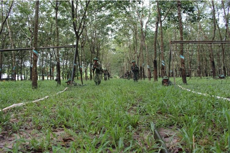 Trung doan bo binh Su doan 5 nang cao chat luong huan luyen-Hinh-3