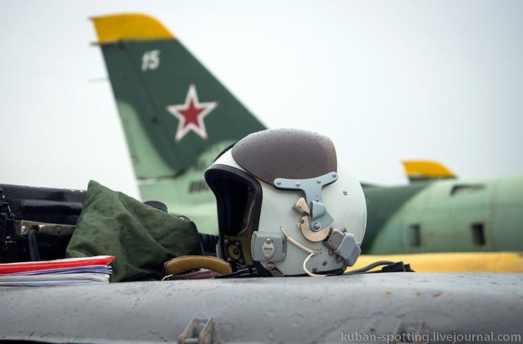 Ly do Nga van chua cho may bay L-39 ve huu-Hinh-15