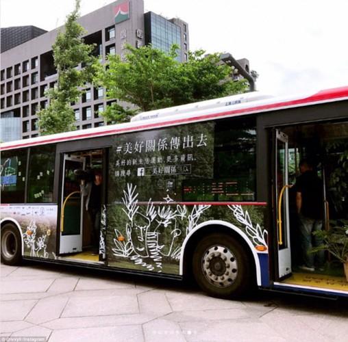 """""""Tron nong"""" trong xe bus """"rung"""" la lung o Dai Loan-Hinh-6"""