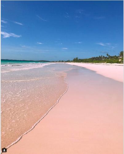 Ngan ngo bai bien cat hong o Bahamas-Hinh-3