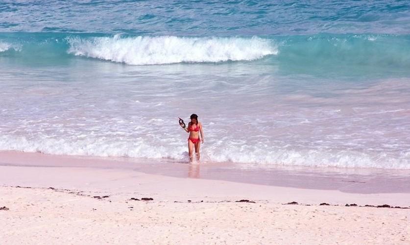 Ngan ngo bai bien cat hong o Bahamas-Hinh-6