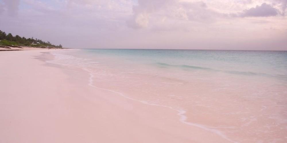 Ngan ngo bai bien cat hong o Bahamas