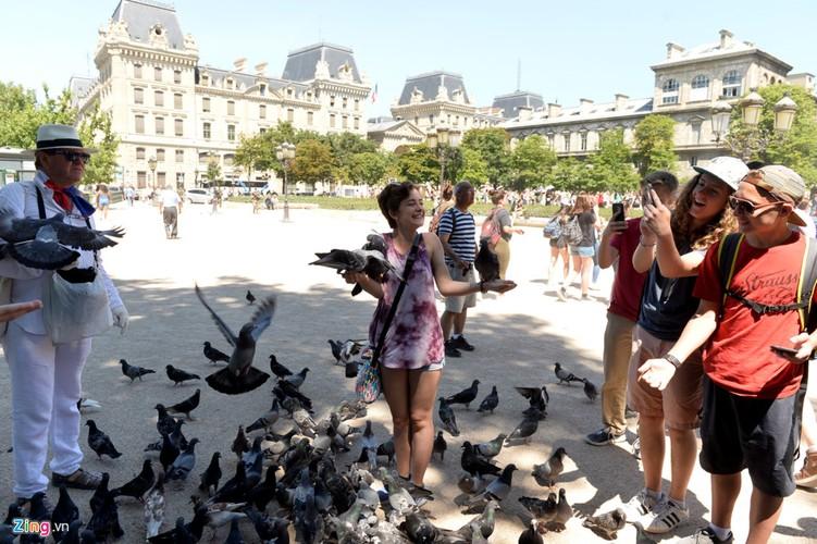 Nam lan duoi thap Eiffel, dua voi chim o nha tho Duc Ba Paris-Hinh-9