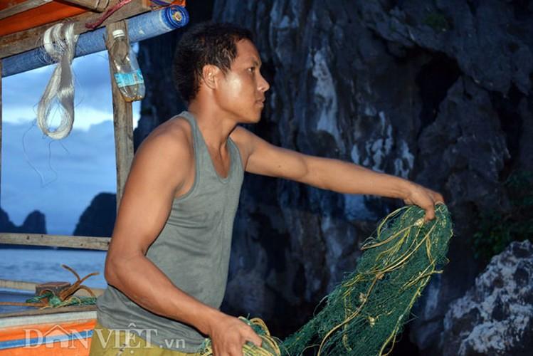 Tan mat thay cao thu san con cu ky nuc tieng o vinh Bai Tu Long-Hinh-5