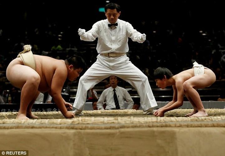 Xem tre em Nhat dau vo sumo ren tinh can dam-Hinh-2