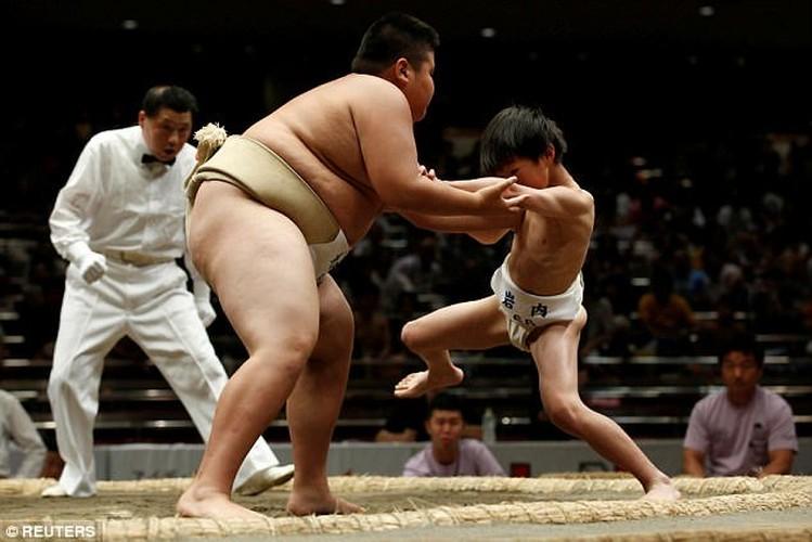 Xem tre em Nhat dau vo sumo ren tinh can dam-Hinh-3