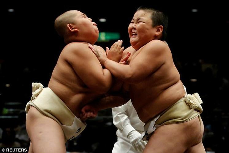 Xem tre em Nhat dau vo sumo ren tinh can dam-Hinh-5