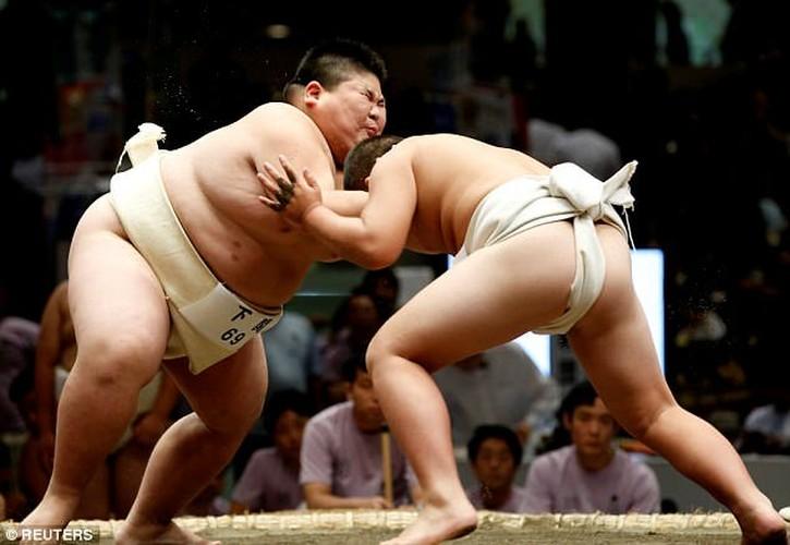 Xem tre em Nhat dau vo sumo ren tinh can dam