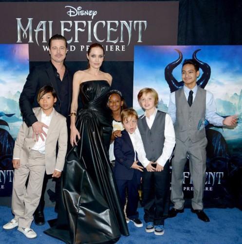 "Bi mat ve nhung ""cau am, co chieu"" nha Angelina Jolie va Brad Pitt"