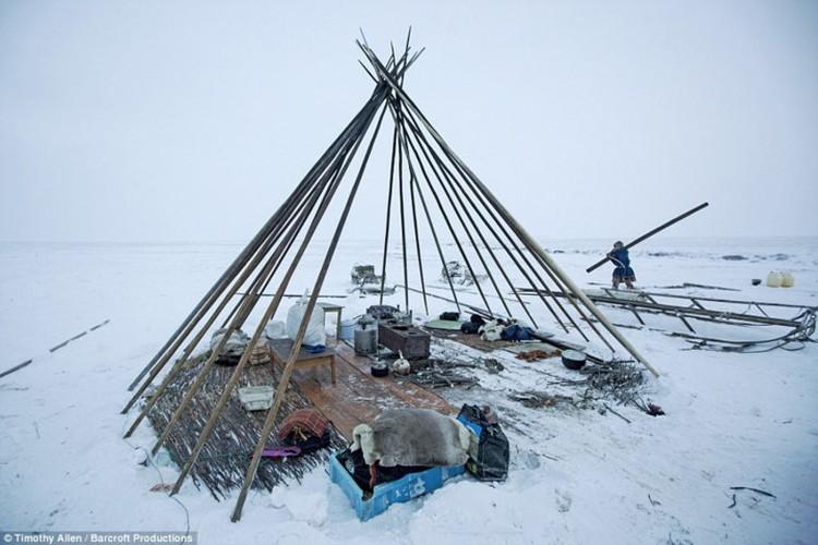 Cuoc song trong cai lanh thau xuong cua nguoi Nenets o Siberia-Hinh-11