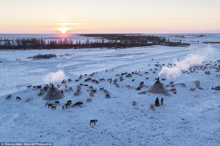 Cuoc song trong cai lanh thau xuong cua nguoi Nenets o Siberia-Hinh-15