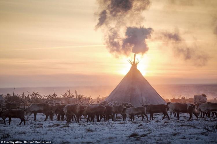 Cuoc song trong cai lanh thau xuong cua nguoi Nenets o Siberia-Hinh-3