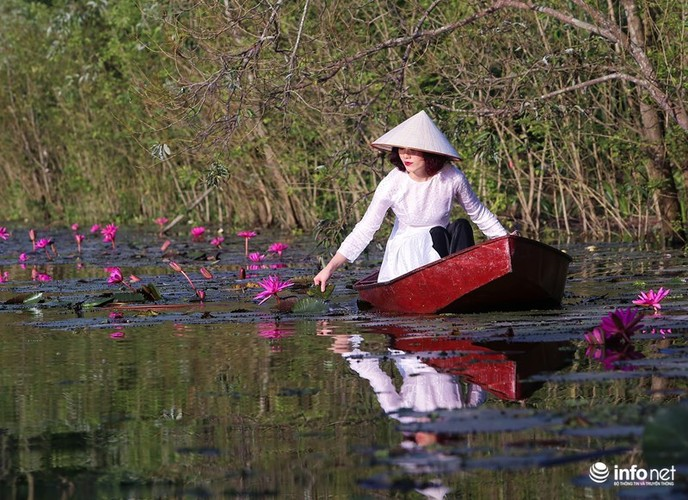 Khong duoc mua, hoa sung van khien Suoi Yen dep mong mo-Hinh-4