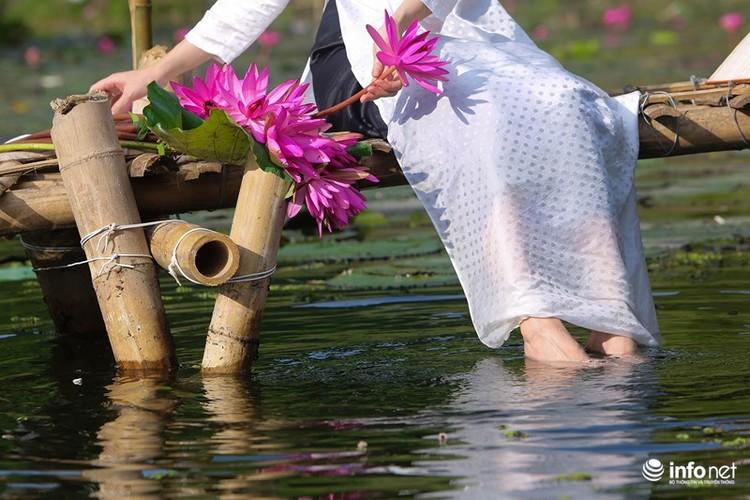 Khong duoc mua, hoa sung van khien Suoi Yen dep mong mo-Hinh-8