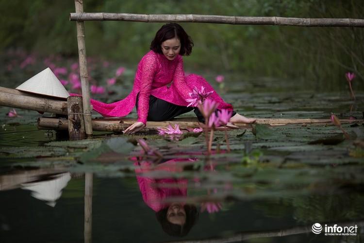 Khong duoc mua, hoa sung van khien Suoi Yen dep mong mo-Hinh-9