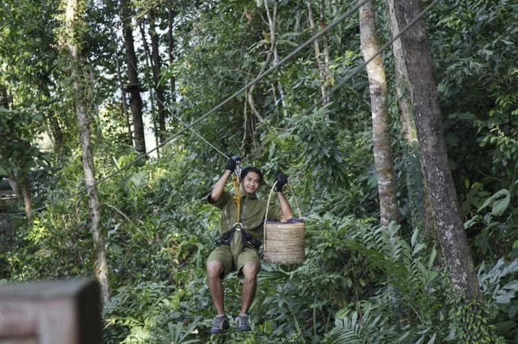 Den Thai Lan tan huong bua tiec lo lung tren cay-Hinh-5