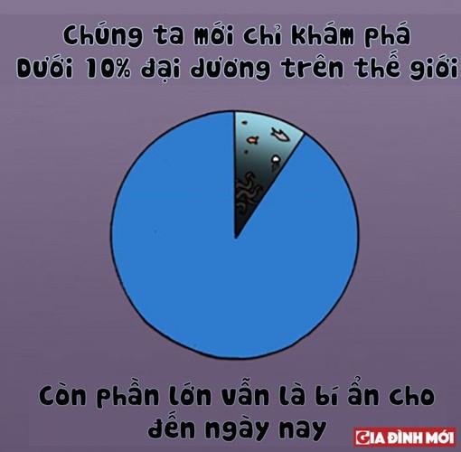 10 su that thu vi co the ban chua biet ve cac con vat-Hinh-3
